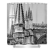 Gothic Detail  Shower Curtain