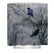 Gothic Gray Wash  Shower Curtain