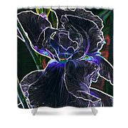 Gothic Iris Shower Curtain