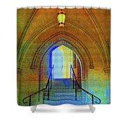 Gothic Steps Shower Curtain