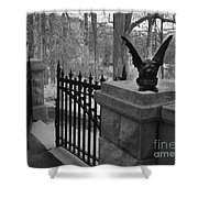 Surreal Gothic Gargoyle With Raven Black And White Gothic Gargoyles Gate Scene Shower Curtain