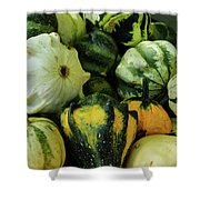 Gourds Galore Shower Curtain