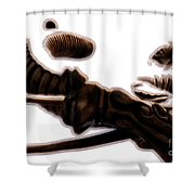 Governing The Forces Shower Curtain