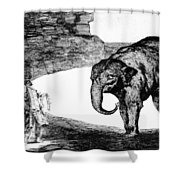 Goya: Elephant, C1820 Shower Curtain