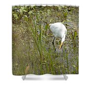 Grabbing Lunch Shower Curtain