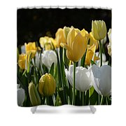Grace And Gladness Shower Curtain
