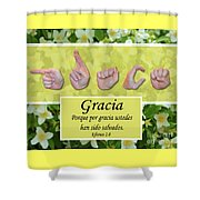 Grace Spanish Shower Curtain