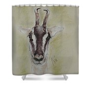 Graceful Flyer Shower Curtain