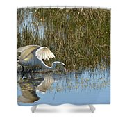 Graceful Great Egret Shower Curtain