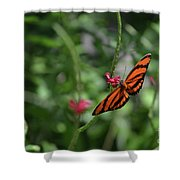 Graceful Oak Tiger Butterfly Around Pink Flowers Shower Curtain