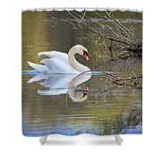 Graceful Swan I Shower Curtain