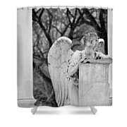 Graceland Cemetery Angel Shower Curtain
