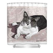 Gracie Jacks Cat Now Shower Curtain