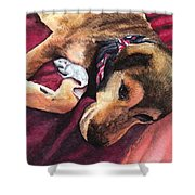 Gracis Great Defender Shower Curtain