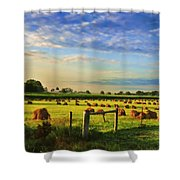 Grain In The Field Shower Curtain
