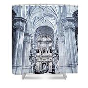 Granada Cathedral Interior Shower Curtain