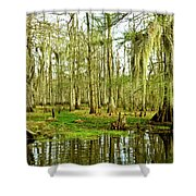 Grand Bayou Swamp Shower Curtain