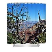 Grand Canyon 13 Shower Curtain