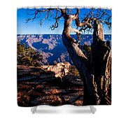 Grand Canyon 27 Shower Curtain