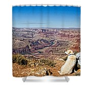 Grand Canyon Girl And Dog Shower Curtain