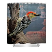 Grand Canyon Woodpecker Shower Curtain