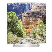 Grand Canyon16 Shower Curtain