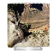 Grand Canyon33 Shower Curtain