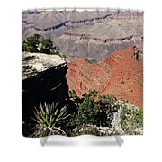 Grand Canyon35 Shower Curtain