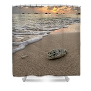 Grand Cayman Beach Coral At Sunset Shower Curtain
