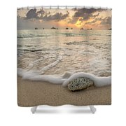 Grand Cayman Beach Coral Waves At Sunset Shower Curtain