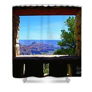 Grand Picture Shower Curtain