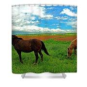 Grand-pre Horses Shower Curtain