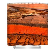 Grand Prismatic Patterns Shower Curtain