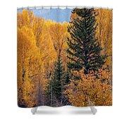 Grand Teton Fall Shower Curtain