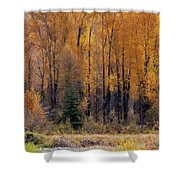Grand Tetons Fall Shower Curtain