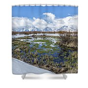 Grand Tetons From Willow Flats In Early April Shower Curtain