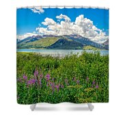 Grand Tetons Wildflowers Shower Curtain