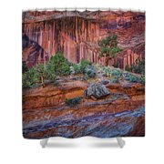 Grand Wash - Capitol Reef Shower Curtain