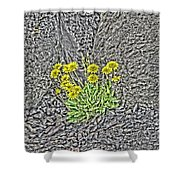 Granite And Grace Shower Curtain