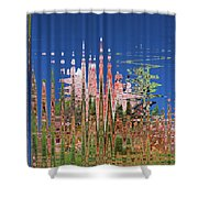 Granite And Sagurao Abstract Shower Curtain