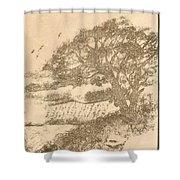 Grape Arbor On Brown Shower Curtain