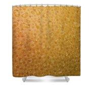 Grapefruit Skin Shower Curtain