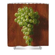 Grapes   Green Shower Curtain