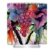 Grapes IIi Shower Curtain
