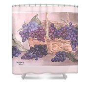 Grapes In Basket Shower Curtain