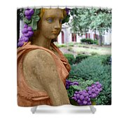 Grapes Of The Garden Shower Curtain
