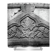 Grapevine Carving Shower Curtain