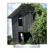 Grapevine Mansion Shower Curtain