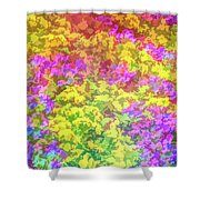 Graphic Rainbow Colorful Garden Shower Curtain
