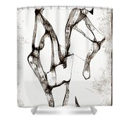 Graphics 1325 Shower Curtain